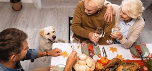 Celebrating Thanksgiving With Your Pet