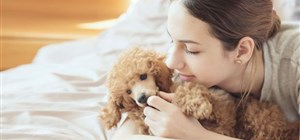Common Illnesses Passed Between Pets and Their Human Families