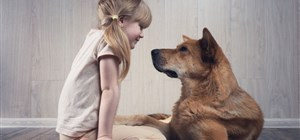 Did You Know Pets are Good for Your Child's Development?