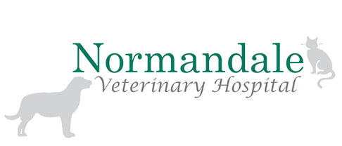 Normandale Veterinary Hospital Logo